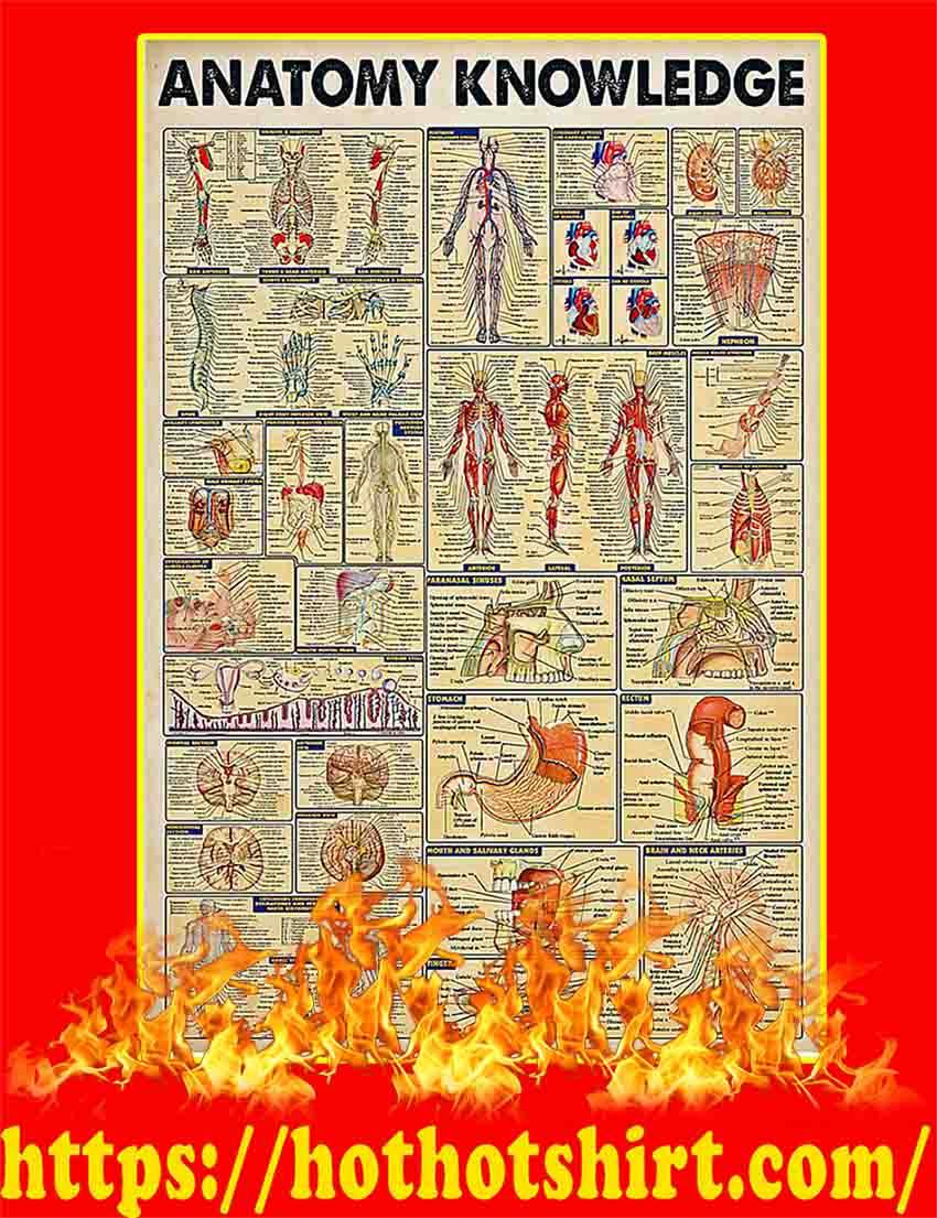 Anatomy Knowledge Poster