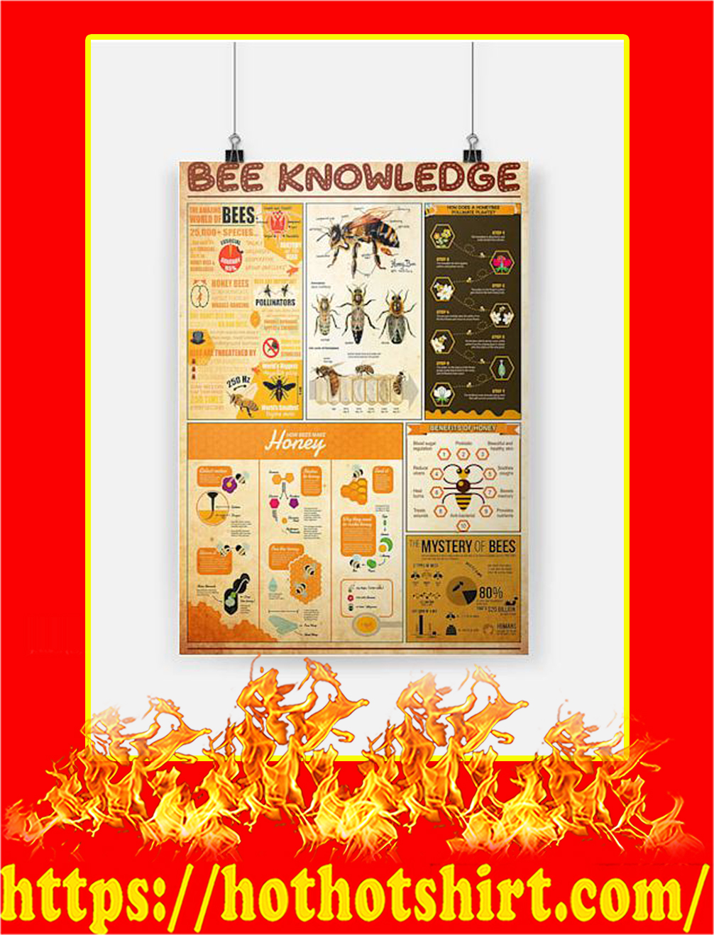 Bee Knowledge Poster