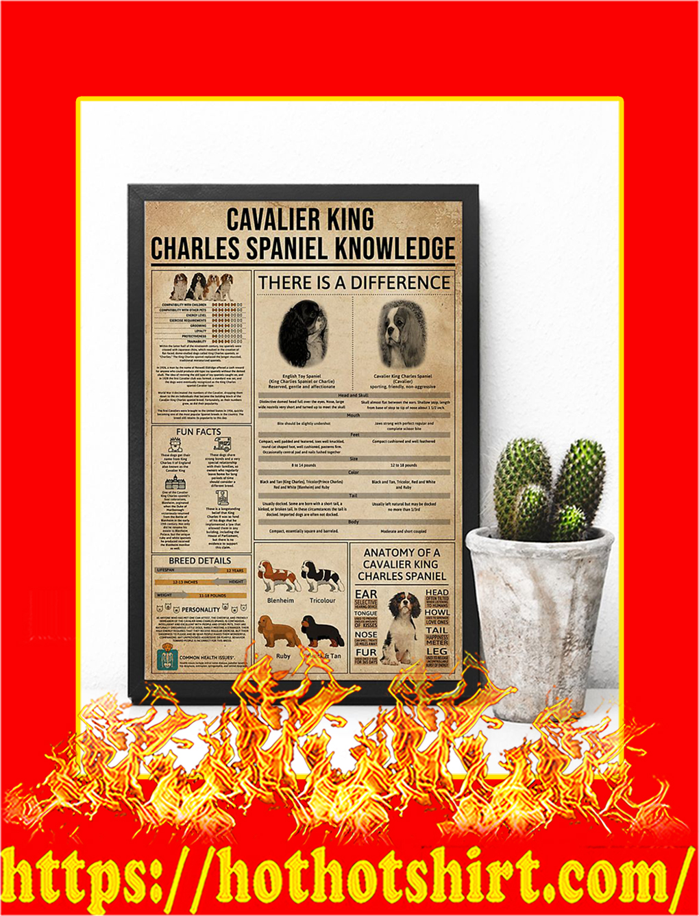 Cavalier King Charles Spaniel Knowledge Poster- 16x24