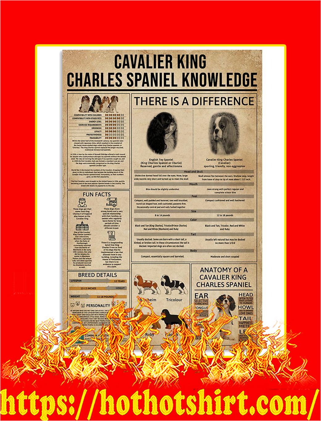 Cavalier King Charles Spaniel Knowledge Poster