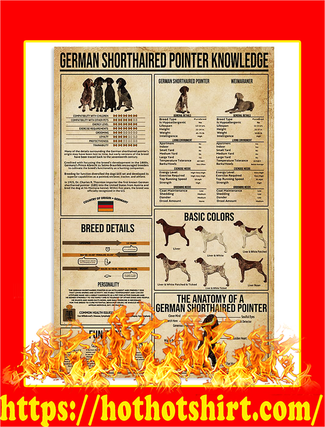 German Shorthaired Pointer Knowledge Poster - A1