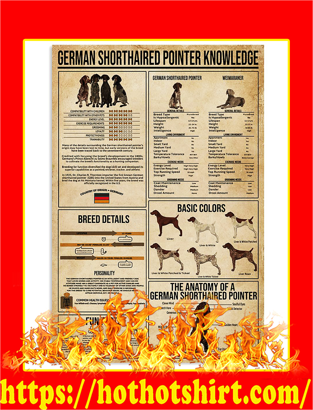German Shorthaired Pointer Knowledge Poster - A2