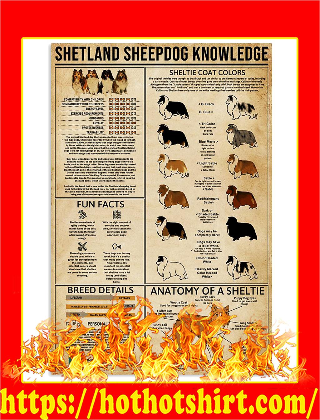 Shetland Sheepdog Knowledge Poster