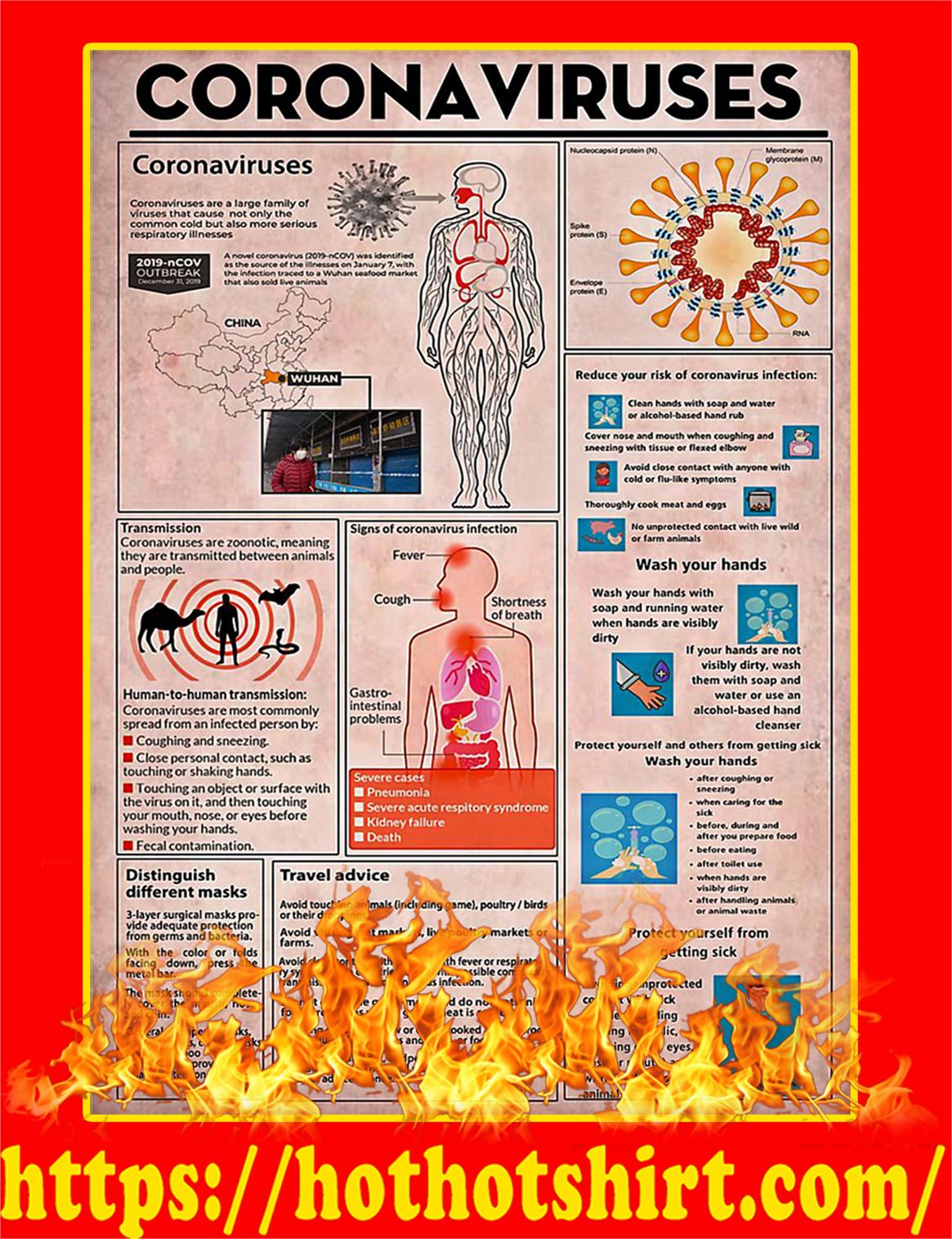 Coronaviruses Knowledge Poster - A2