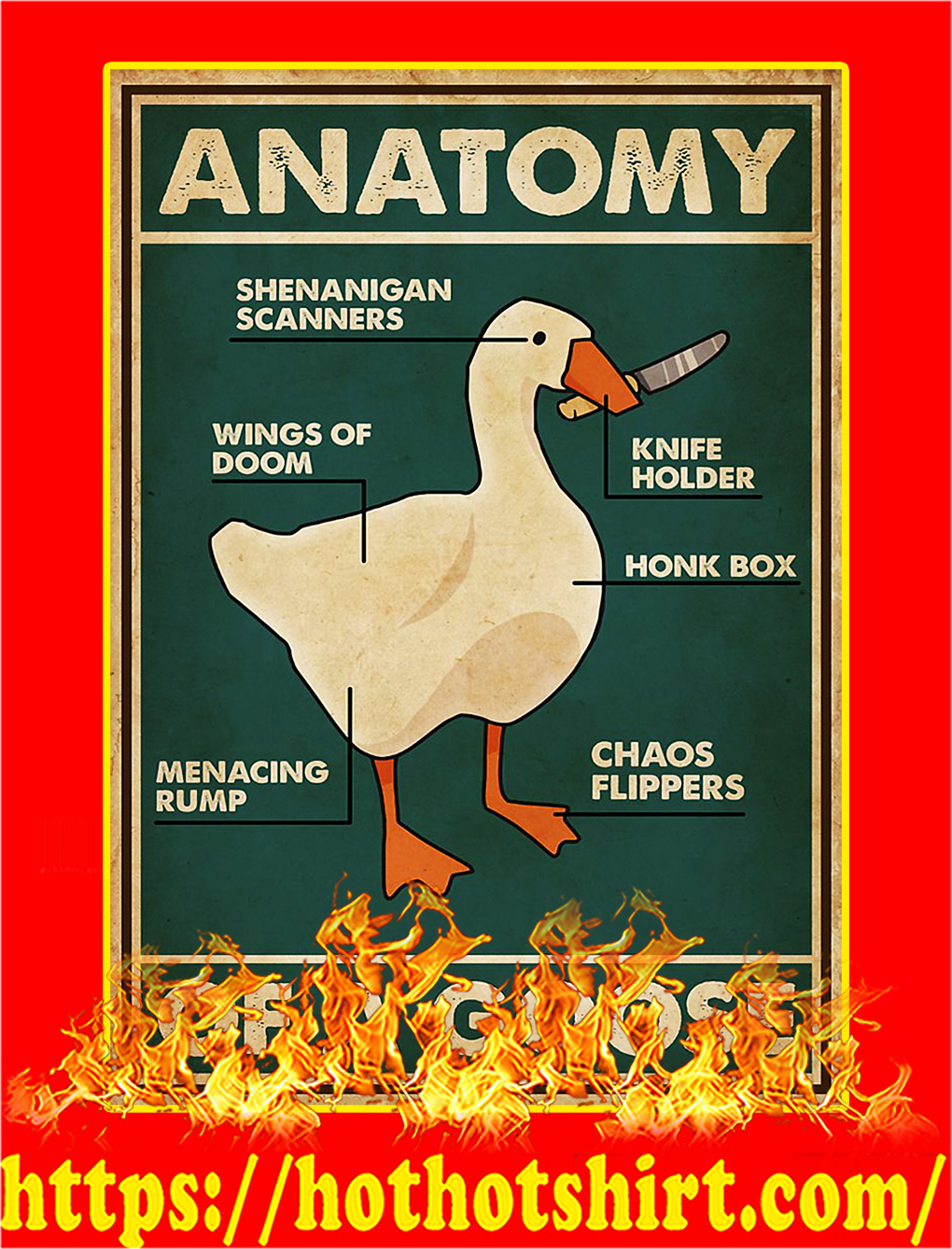 Anatomy of a goose poster - A2