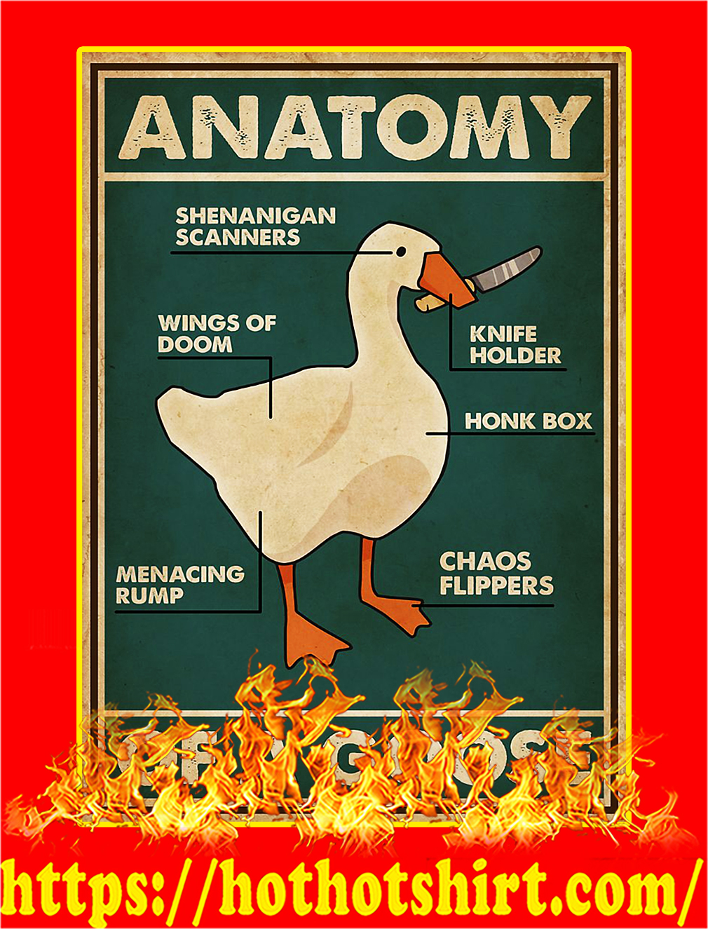 Anatomy of a goose poster - A3
