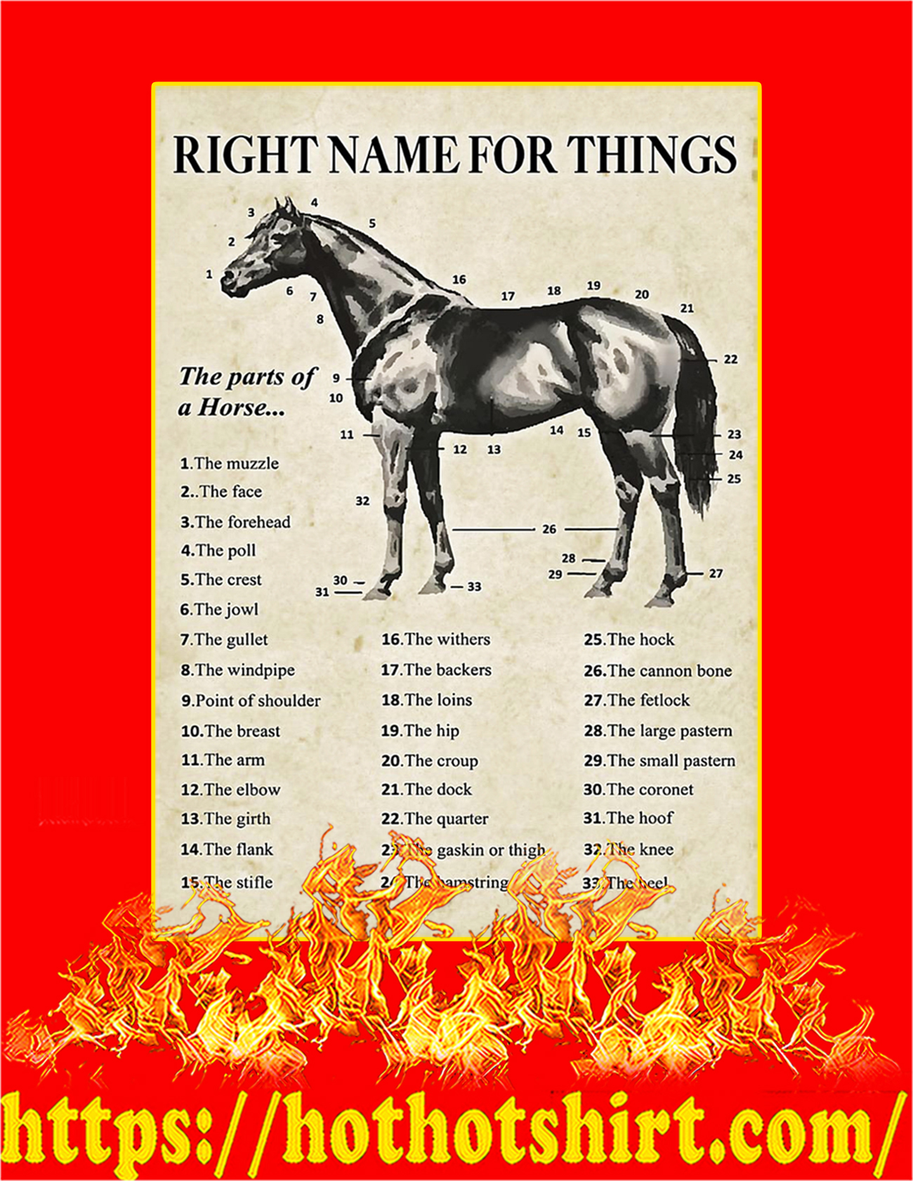 Right name for things horse poster - A4
