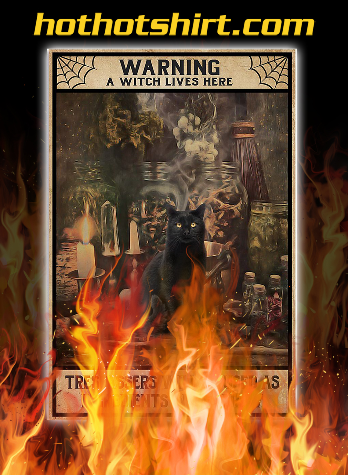 Black cat warning a witch lives here poster - A3