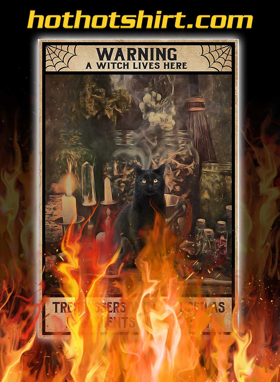 Black cat warning a witch lives here poster - A4