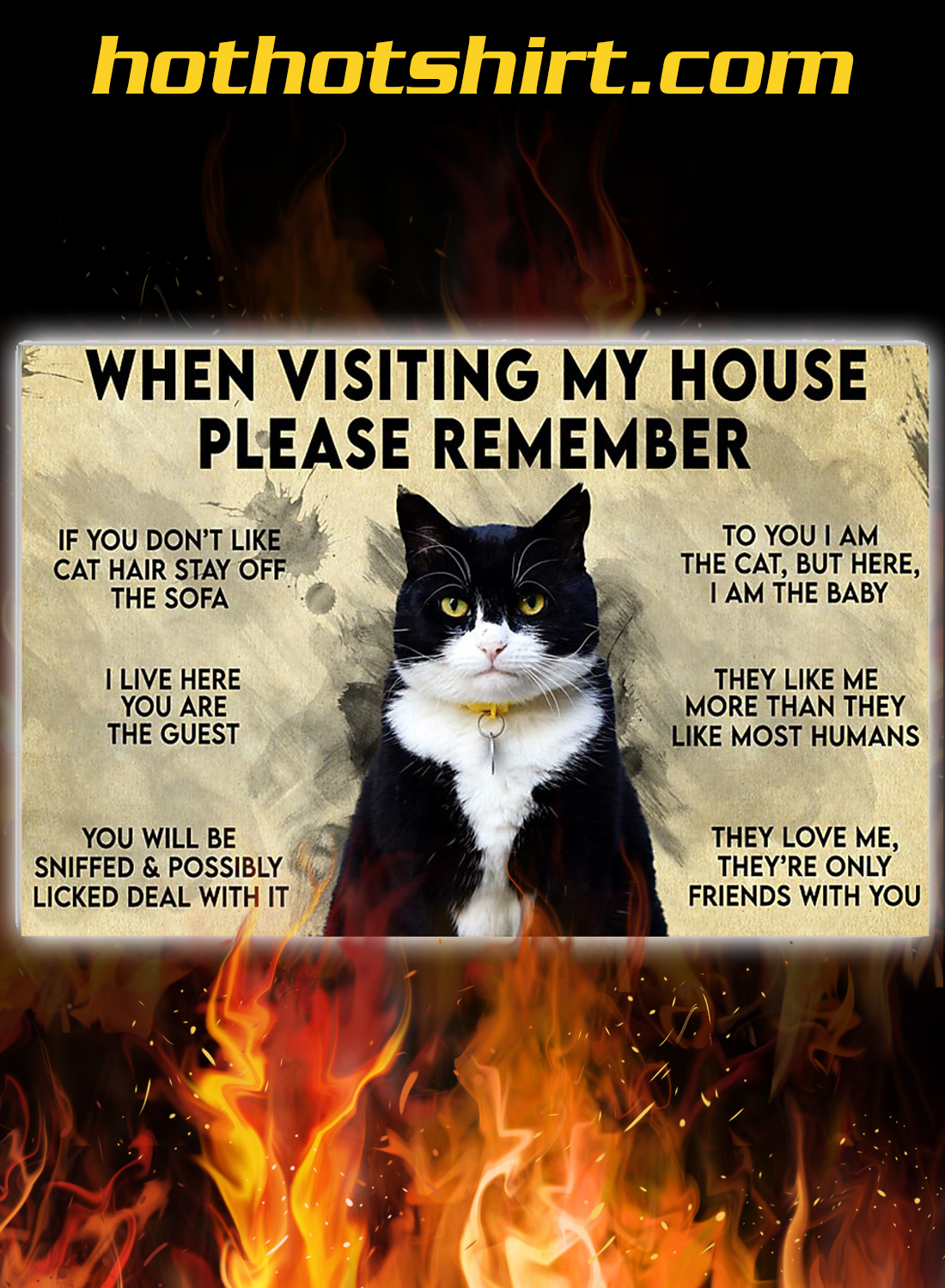 Cat when visiting my house please remember poster 1