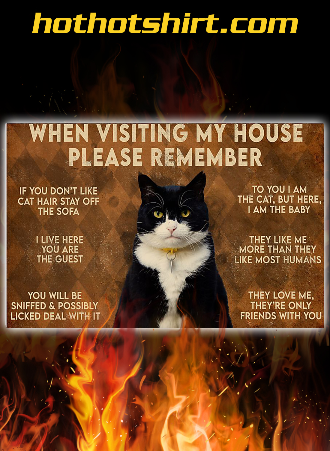 Cat when visiting my house please remember poster 2