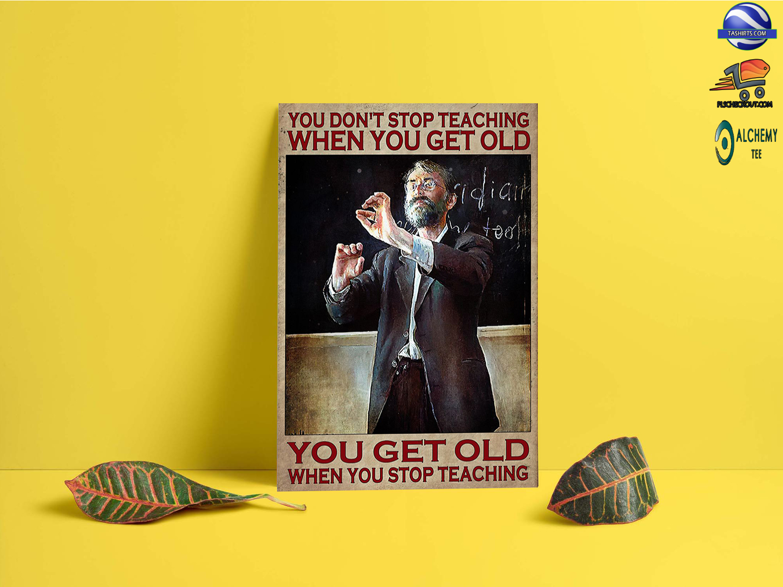 You don't stop teaching when you get old you get old when you stop teaching poster